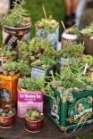 decor_with_plants_LiveLoveCreateInspire