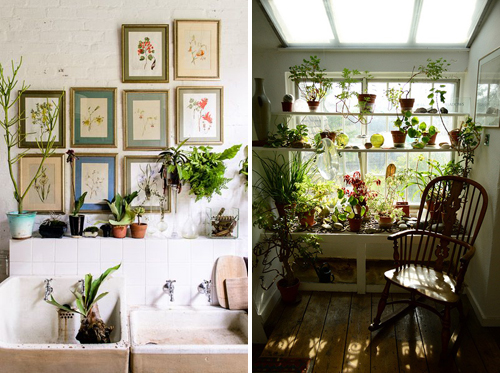 decor_with_plants_LiveLoveCreateInspire16
