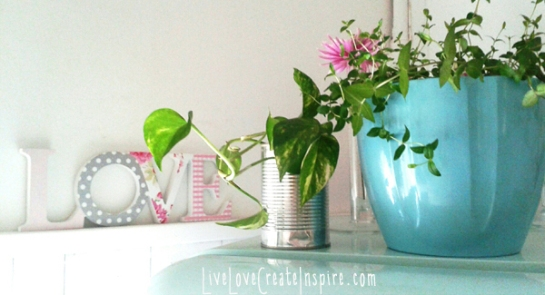 decor_with_plants_LiveLoveCreateInspire_kitchen