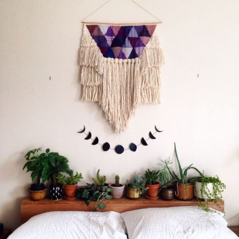 plant display19