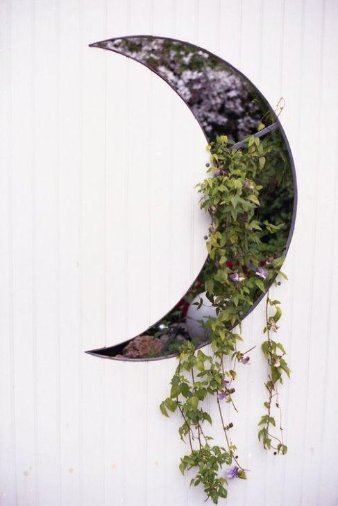 plant display8
