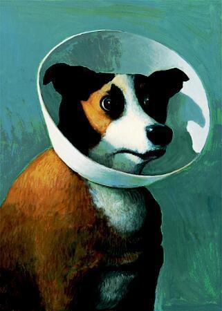 Filmhound-amelie-15593235-321-450